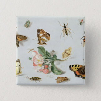 Butterflies, moths and other insects button