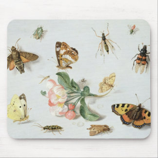 Butterflies, moths and other insects mouse pad