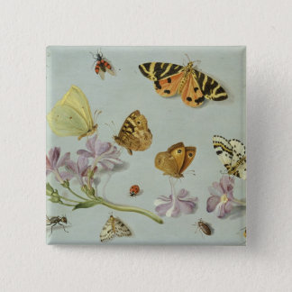 Butterflies, moths and other insects pinback button