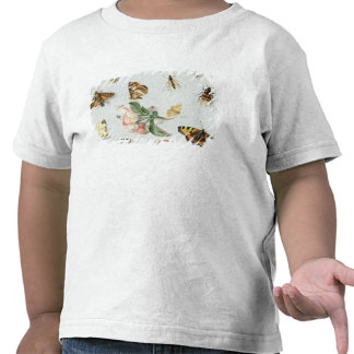 Butterflies, moths and other insects shirt