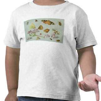 Butterflies, moths and other insects tee shirt