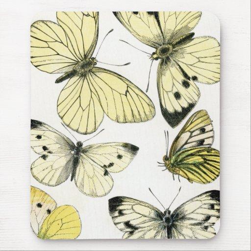 Butterflies Mousemat