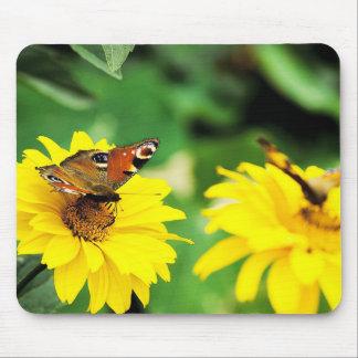 Butterflies - Mousepad