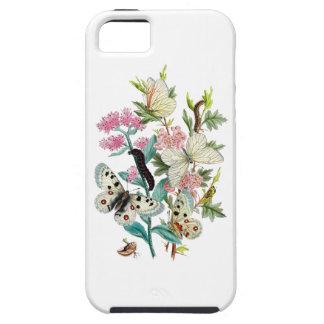 Butterflies of Summer iPhone 5 Cases