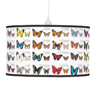 Butterflies of the World Hanging Lamp
