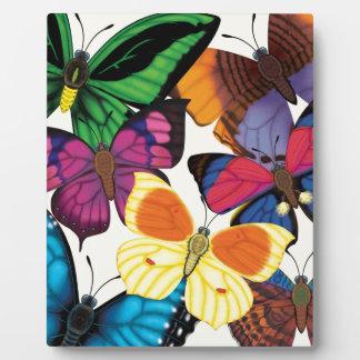 Butterflies of the World Plaque
