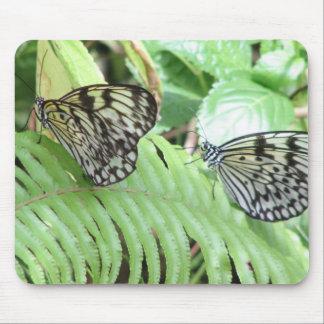 Butterflies on Fern  Mouse Pad