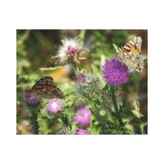 Butterflies on Flowers Photo Single Print