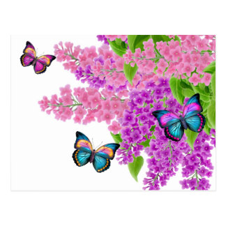 Butterflies on Lilacs Postcard