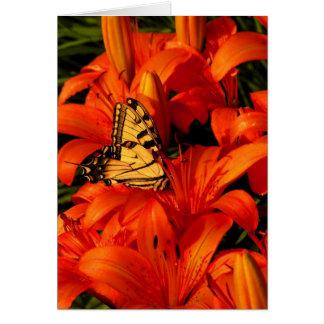 Butterflies on Tiger Lilies Card