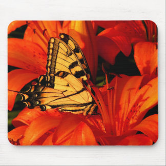 Butterflies on Tiger Lilies Mouse Pad