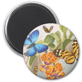 Butterflies & Orchids Magnet