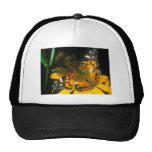 butterflies painted lady mesh hats