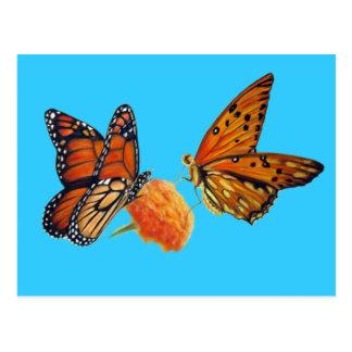 Butterflies Pastel Painting Postcard