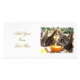 BUTTERFLIES PHOTO CARD