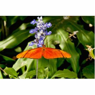 Butterflies photosculpture photo sculpture