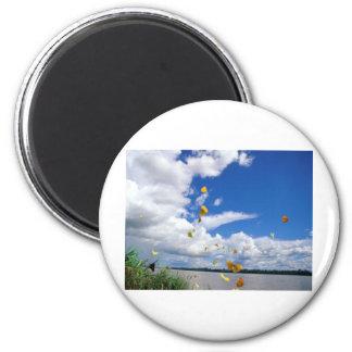 butterflies pierides amazon river 2 inch round magnet