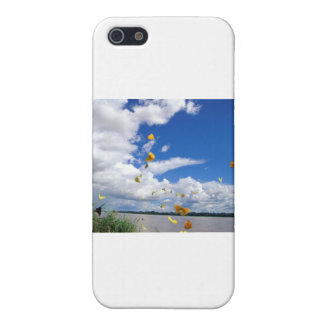 butterflies pierides amazon river cover for iPhone SE/5/5s