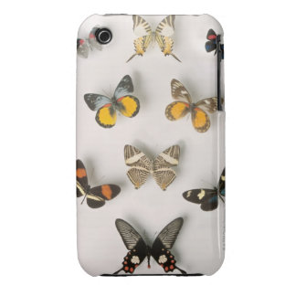 Butterflies scattered iPhone 3 case