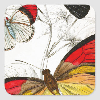 Butterflies Square Sticker