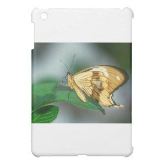 butterflies swallow tail butterfly iPad mini covers