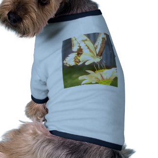 butterfliy love doggie t shirt