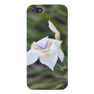 butterflower case for iPhone SE/5/5s