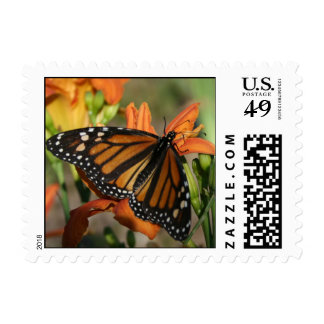 butterfly2 postage stamps