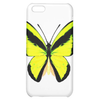 butterfly5 case for iPhone 5C