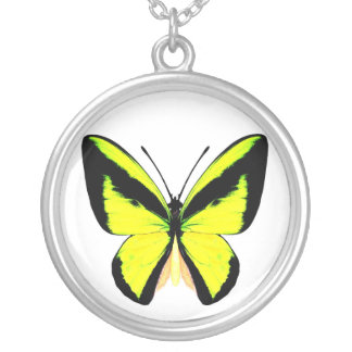 butterfly5 round pendant necklace