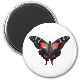 Butterfly 02 magnet