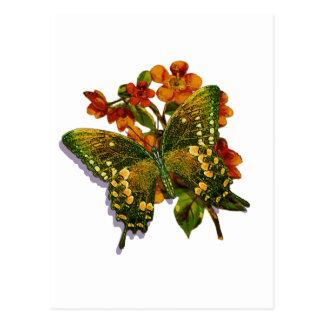 Butterfly-04 Postcard