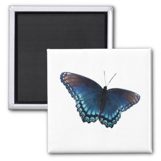 butterfly 16 2 inch square magnet