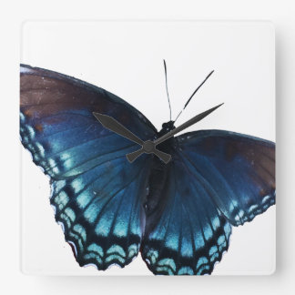 butterfly 16 square wall clock