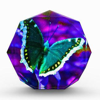 Butterfly 1.JPG Award