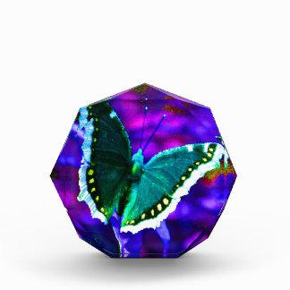 Butterfly 1.JPG Acrylic Award