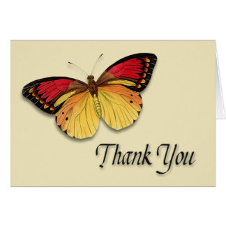 Butterfly 1-Thank You Card