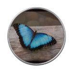 butterfly-311.jpg jarrones de dulces