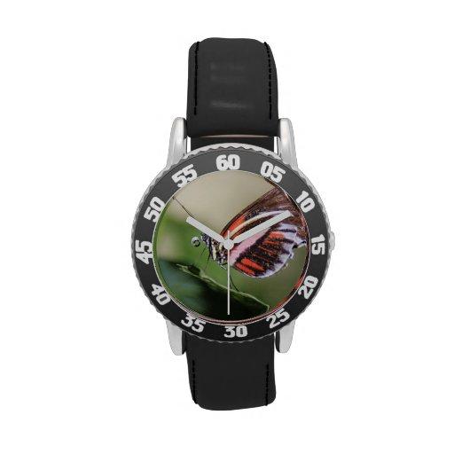 butterfly-52.jpg wrist watch