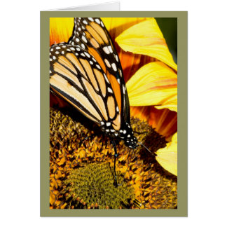 butterfly abstract card