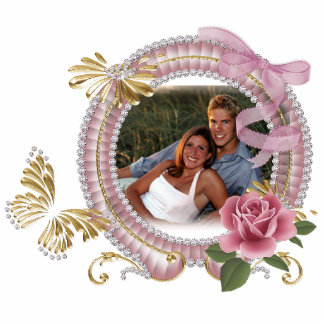 Butterfly Acrylic PHOTO Frame for office or home Cutout