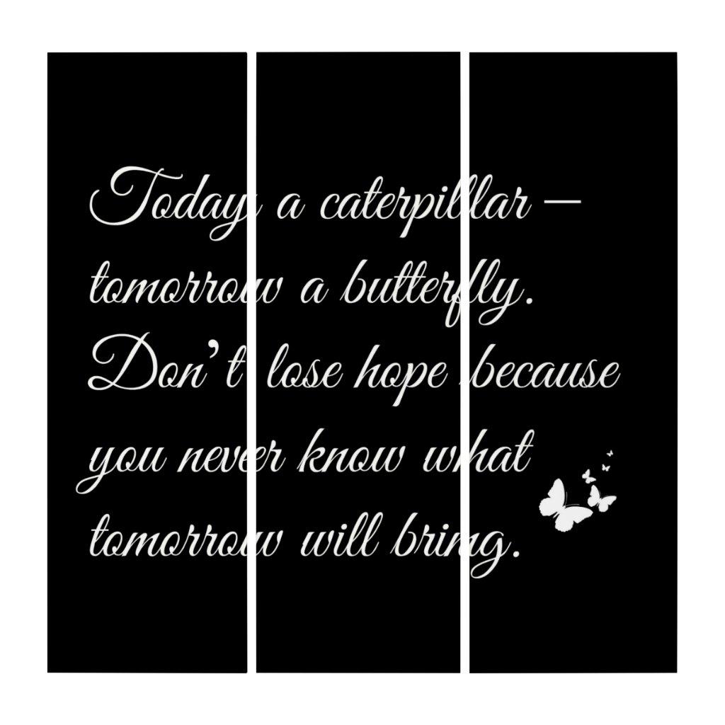 Butterfly AcryliPrint®HD Triptych Wall Art (3) 36