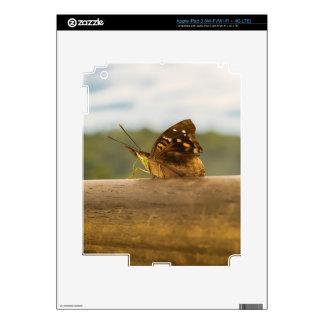 Butterfly against Blur Background at Iguazu Park iPad 3 Skin