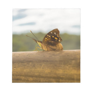 Butterfly against Blur Background at Iguazu Park Notepad