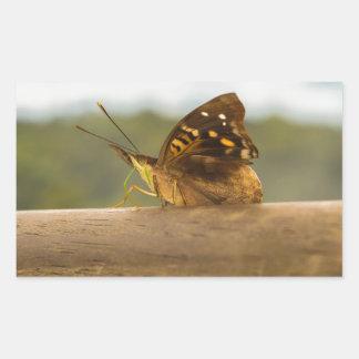 Butterfly against Blur Background at Iguazu Park Rectangular Sticker