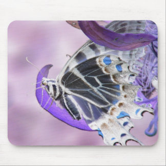 Butterfly altered mouse pad