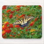 Butterfly Among Lantana Mousepads