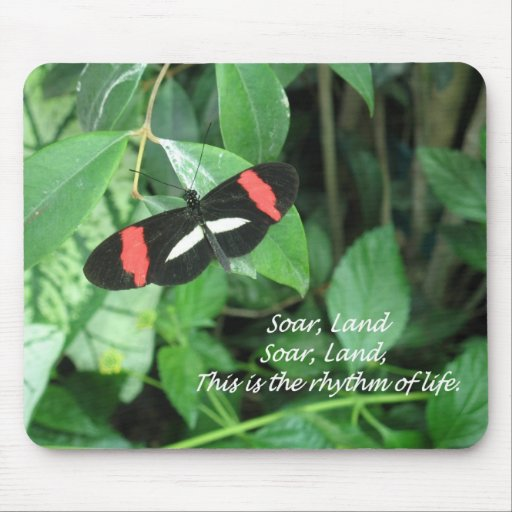 Butterfly and a poem on a mouse pad!