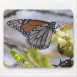Butterfly and Bee Mouse Pads