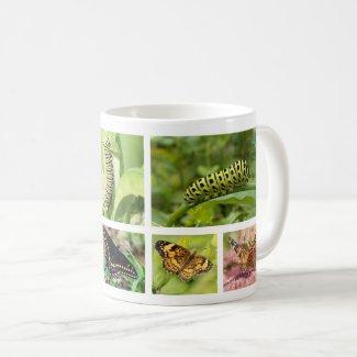 Butterfly and Caterpillar Coffee Mug
